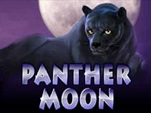 Игровой автомат Panther Moon на деньги