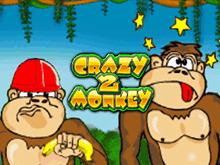 В аппараты Вулкан играть на деньги Crazy Monkey 2