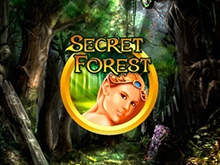 В аппараты Вулкан играть на деньги Secret Forest