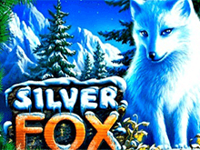 Игровые автоматы на реальные деньги Silver Fox